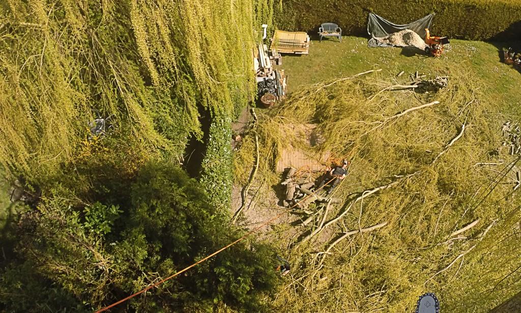 Sécuriser les chutes par la technique de rétention qui permet aux branches coupées de glisser le long du tronc jusqu'à l'emplacement désiré.