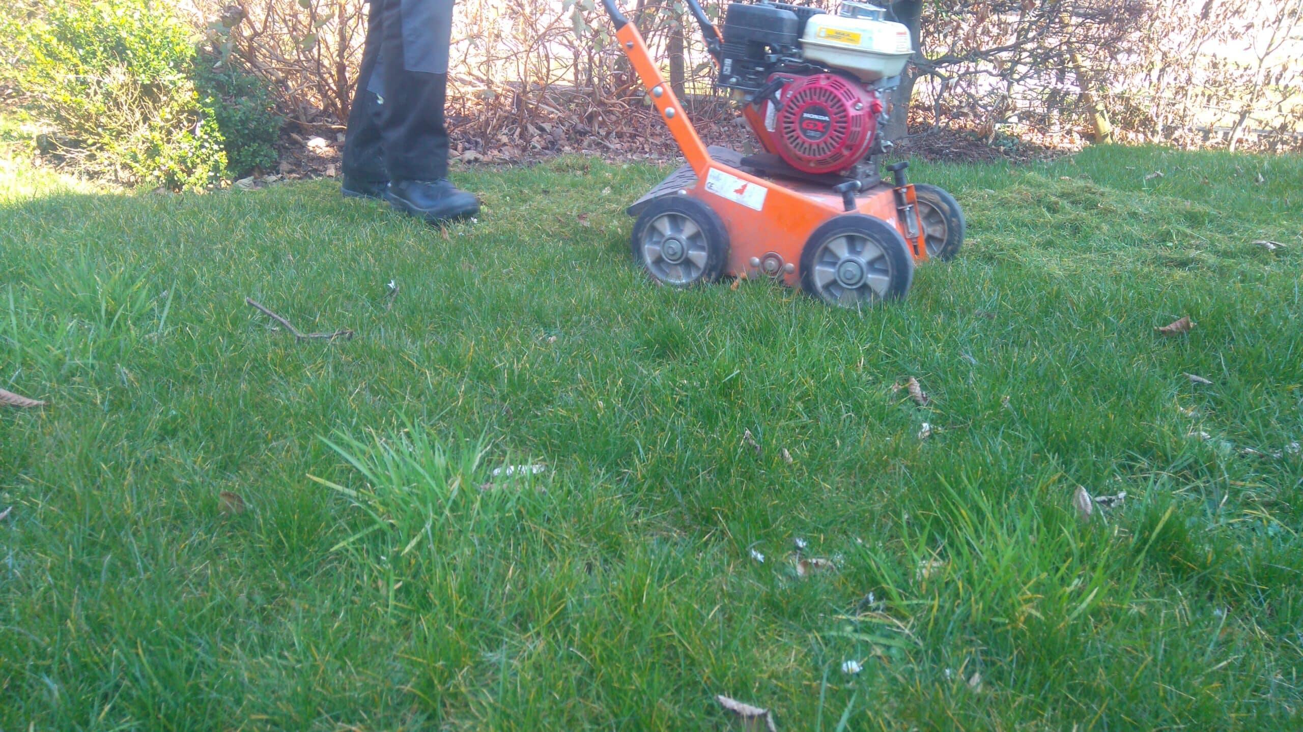 Technique a rer la terre plaisir vert jardinier paysagiste et arboriste cordiste - Retourner la terre pour pelouse ...