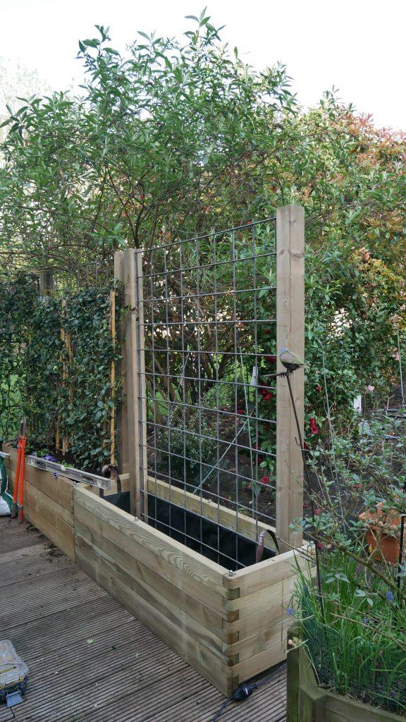 Montage de grille de soutient dans jardinière
